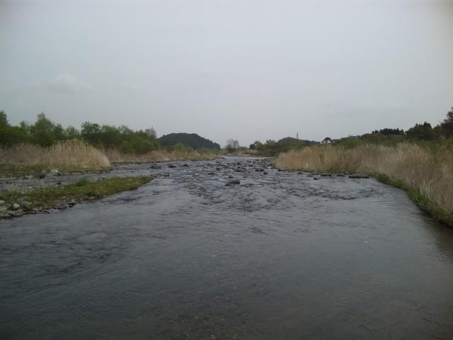 栃木の渓流