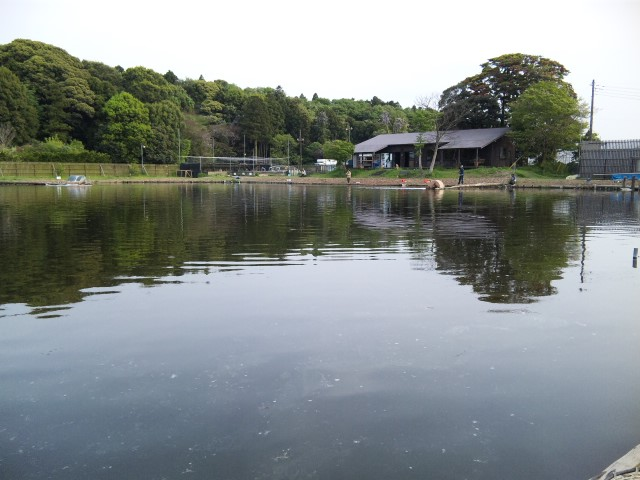 成田の管理釣り場