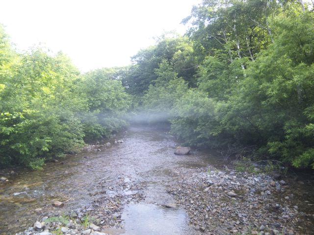 久々の新潟。魚野川支流
