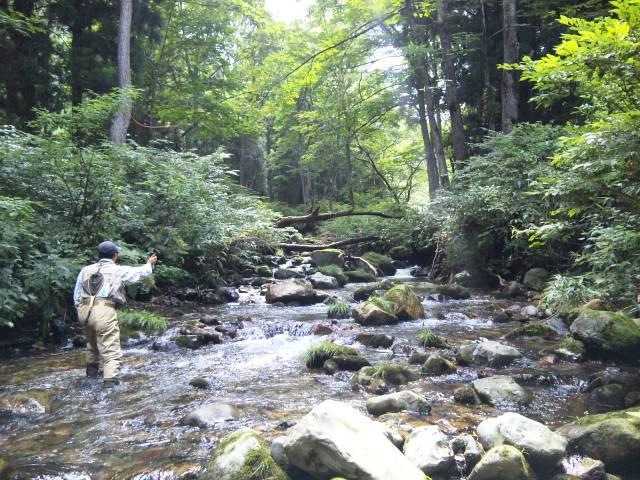新潟県魚野川支流