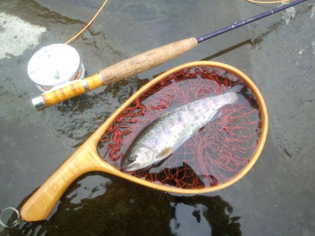 2012年初釣行