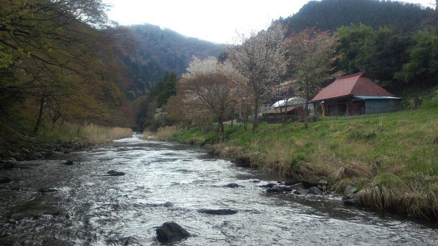 Iwaki201304